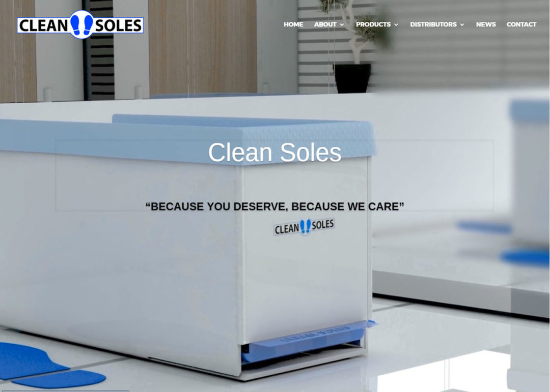 Web Design And Development Project Clean Soles