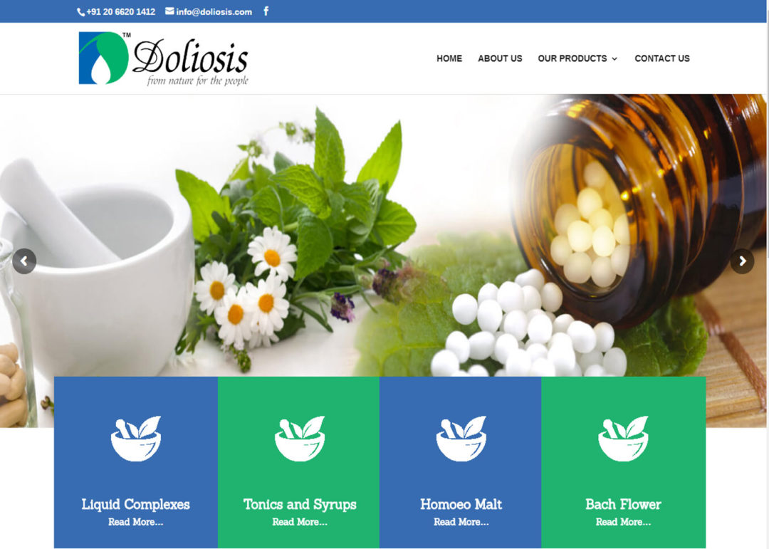 Web Design And Development Project Doliosis