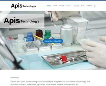 Web Design And Development project apistechnologys