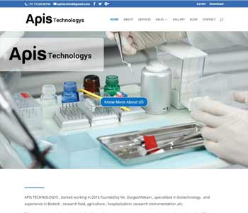 Web Design And Development project apistechnologys