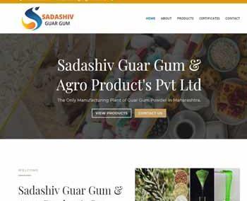 Web Design And Development project Sadashiv Guar Gum & Agro Product's Pvt Ltd