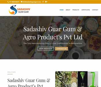 Web Design And Development project Sadashiv Guar Gum & Agro Product's Pvt Ltd