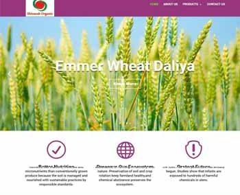 Web Design And Development project shivanshorganic