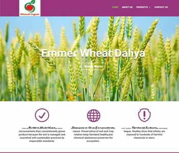 Web Design And Development project shivanshorganic